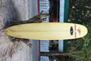 Longboard rental in the Maldives